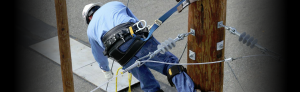 pole climbing and fall protection products